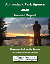2019 APA Annual Report