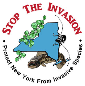 Stop The Invasion!